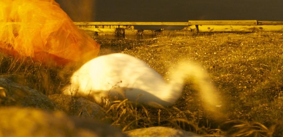 Isolation/Gennemsigtighed - Her ses hvordan puppen bliver en del af landskabet, og brugeren bliver en skygge under puppen.